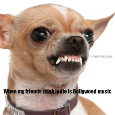 What should i do now? #indie # bollywood #friends #wankers Mikhail